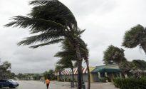 [Weather alert] Tropical storm set to slam Gulf Coast