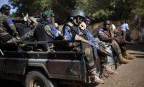 Suicide bombing kills 50, over 100 injured