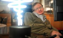 Stephen Hawking's wheelchair auctions off for $393,000